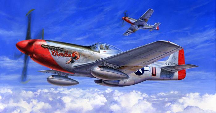 1/32 ノースアメリカン P-51D マ...